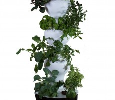 Hydroponic-Tower-03
